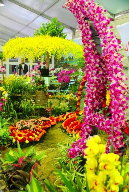 Sanya int'l orchid show 2013