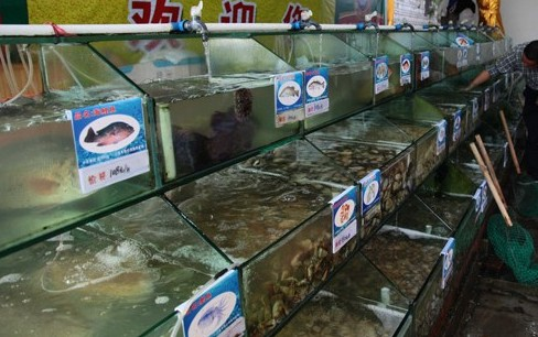 Price supervision system to cover 168 seafood stalls in Sanya
