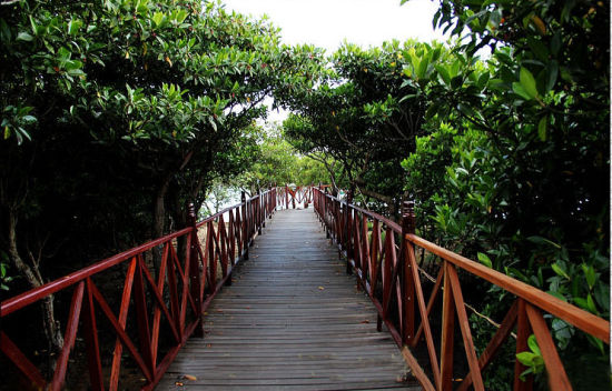 4 greenways for cycling in Hainan