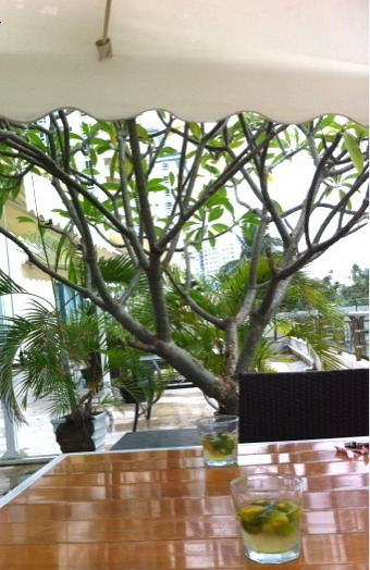 Lemongrass brings a taste of Thailand to Sanya