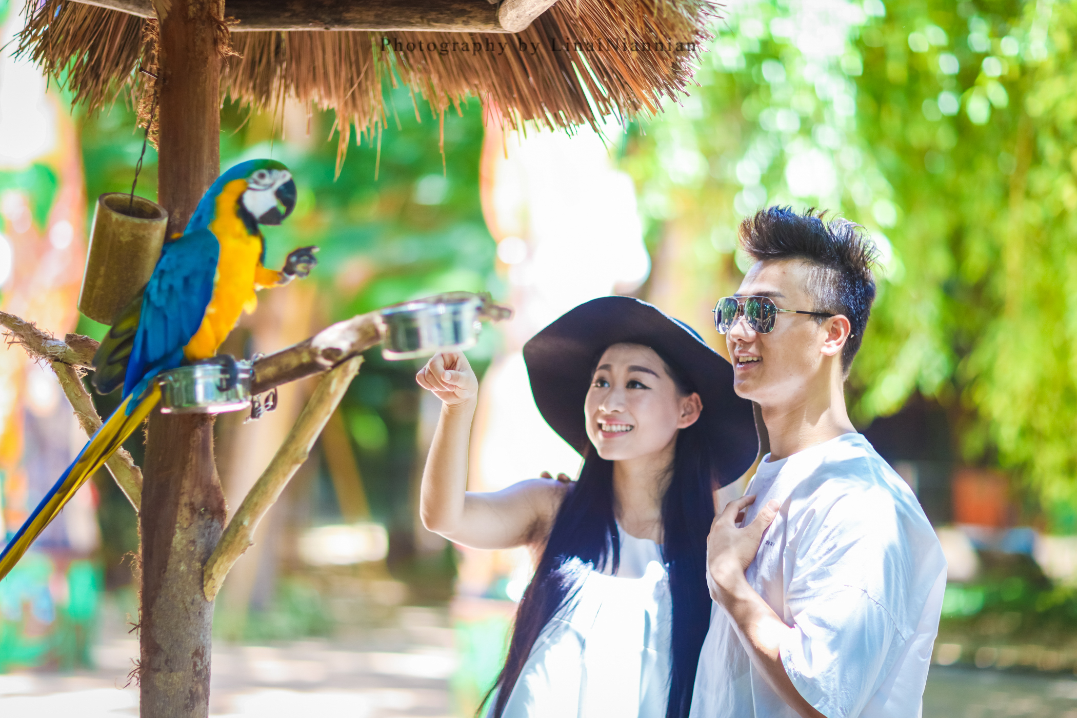 Enjoy wildlife at the four animal attractions in Hainan